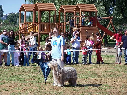 Fesztivál az Állatokért - Nyírségi Ősz 2009