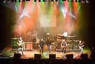 Mobilmánia és Radar koncert a Bujtosiban