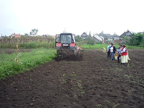 Nyíregyházán és Nyírvasváriban is megkezdődött a betakarítás