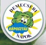 Demecseri Káposztás napok