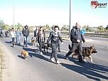 Fesztivál az Állatokért 2013 - 1.rész