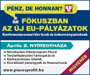 Fókuszban az új EU-pályázatok  Konferenciasorozat kkv-knak és önkormányzatoknak