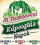 Demecseri Káposztás Napok 2015